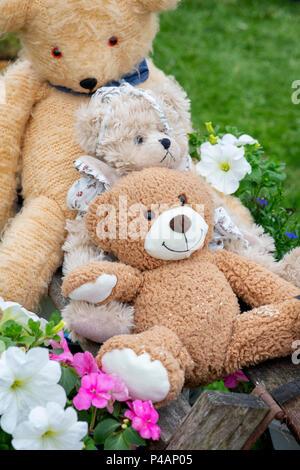 Three teddy bears on a flower show display. UK - Stock Photo