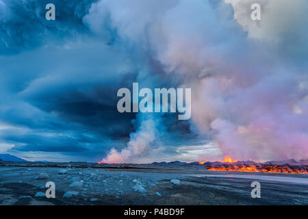 Volcano Eruption at the Holuhraun Fissure near Bardarbunga Volcano, Iceland. A late afternoon view of part of the Holuhraun fissure erupting as lava and steam rise into the air near the Bardarbunga Volcano, Iceland. Bardarbunga is a subglacial stratovolcano located under the ice cap of Vatnajokull glacier. Picture date- Sept. 2, 2014 - Stock Photo
