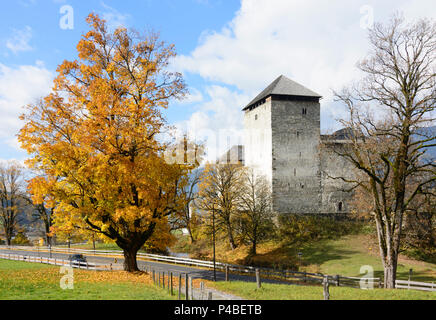 Kaprun, Kaprun Castle, maple trees, Pinzgau, Salzburg, Austria - Stock Photo