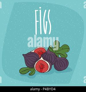Group of several ripe fig fruits with small leaves, whole and beautifully cut into pieces. Isolated background. Realistic hand draw style. Lettering i - Stock Photo