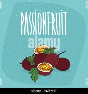 Group of several ripe passion fruits with small leaves, whole and beautifully cut into pieces. Isolated background. Realistic hand draw style. Letteri - Stock Photo