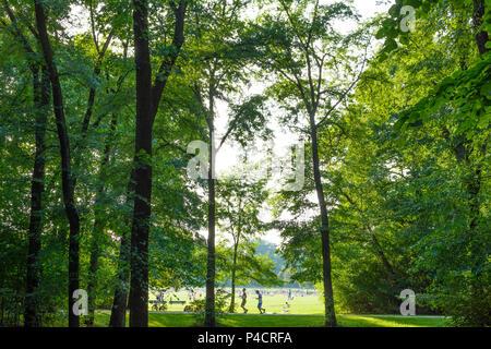 Munich, Englischer Garten (English Garden), view to Monopteros, stream Schwabinger Bach, sunbather, jogger, people, Upper Bavaria, Bavaria, Germany - Stock Photo