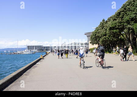 Wellington, New Zealand - 13 February  2016: People out enjoying sunny weather in summer along the Wellington Waterfront with copy space. - Stock Photo