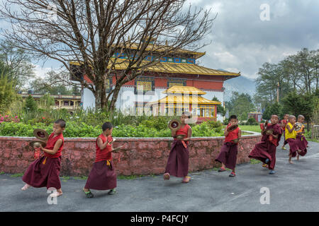 Gangtok, India - May 3, 2017: Unidentified young novice buddhist monks in traditional red robes practicing in playing Tibetan music instrument tingsha - Stock Photo