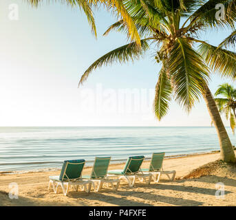 Tropical island vacation with deckchairs under palmtrees by calm ocean - Stock Photo