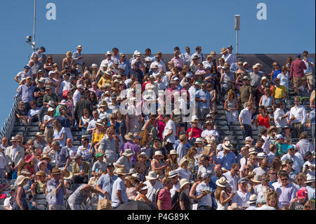 The Queen's Club, London, UK. 22 June, 2018. Day 5 quarter-final match on centre court with spectators on the upper stand watching Adrian Mannarino (FRA) play Novak Djokovic (SRB) in hot sun. Credit: Malcolm Park/Alamy Live News. - Stock Photo