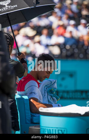 The Queen's Club, London, UK. 22 June, 2018. Day 5 quarter-final match on centre court with Adrian Mannarino (FRA) vs Novak Djokovic (SRB). Credit: Malcolm Park/Alamy Live News. - Stock Photo