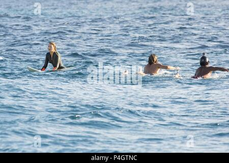 Original Film Title: THE SHALLOWS.  English Title: THE SHALLOWS.  Film Director: JAUME COLLET-SERRA.  Year: 2016.  Stars: BLAKE LIVELY. Credit: COLUMBIA PICTURES/OMBRA FILMS/WEIMARANER REPUBLIC PICTURES / Album - Stock Photo