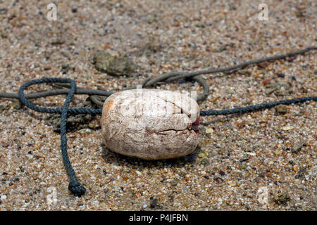 Fishing buoy used on a beach in Thailand - Stock Photo