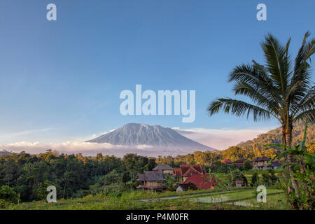Rice terraces with Mount Agung in background, Bali, Indonesia - Stock Photo