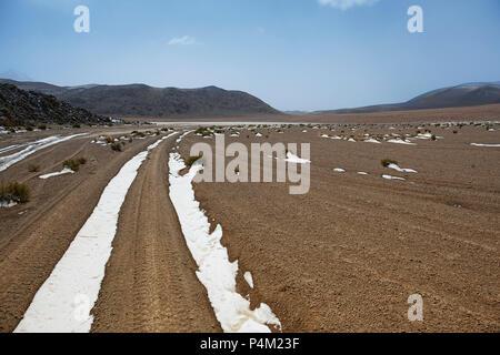 Snow covered track in Farallon de Tara, Atacama Desert, Bolivia - Stock Photo