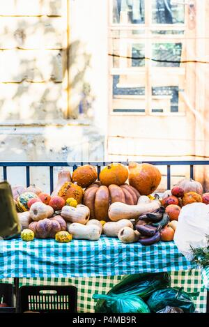 Assorted pumpkins and squashes at a market stand in Beirut, Lebanon - Stock Photo