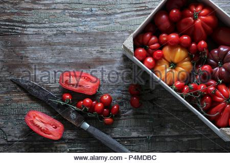 Various tomatoes in a box - Stock Photo