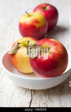 Fresh organic red apples - Stock Photo
