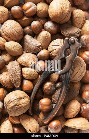 Various nuts and a vintage nutcracker - Stock Photo