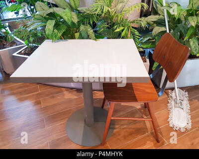 Botanic style in the interior, House plants display. Indoor plants and empty white table with wood chair and wooden floor with mop, swab for clean flo - Stock Photo