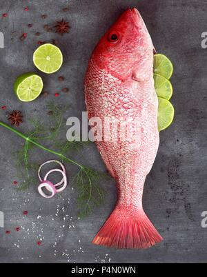 Raw Red Snapper Stuffed with Lime Surrounded by Seasonings - Stock Photo
