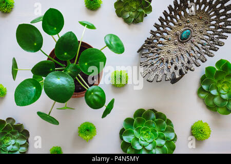 Pilea Plant, Succulents and Chrysanthemums Arranged with Antique Vessel - Stock Photo