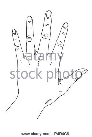 hand-molding series (1) hand-reading sunhand serie - Stock Photo