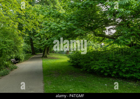 park at the entrance to the town of kampen with path and its leafy trees and their shadows in park around the city of kampen. netherlands holland - Stock Photo