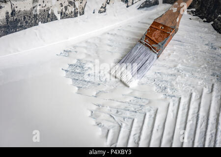 Wet Paint Brush In White Paint