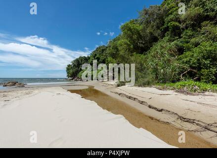 The Borneo rainforest reaches down to the South China Sea at Kota Kinabalu, Borneo, Malaysia - Stock Photo