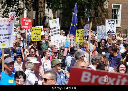 People's Vote, London, UK,  23rd June 2018.  Protestors march along Whitehall on a very hot summers day ( see man with paper hat ) en route Parliament Square to demand a second vote on the final Brexit deal - Steven May /Alamy Live News - Stock Photo