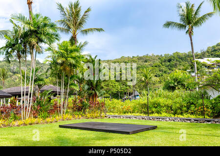 Palm trees and other exotic vegetation against a blue sky in Borneo, Malaysia - Stock Photo