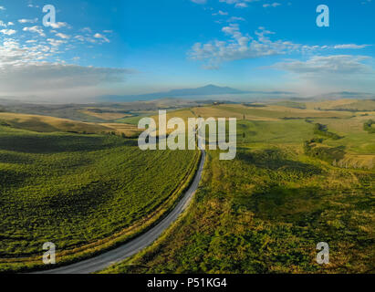 Road with cypress trees in the Val d orcia (Orcia Valley) near Pienza in Tuscany, Italy - cypress trees along the famous white road, or strada bianca - Stock Photo
