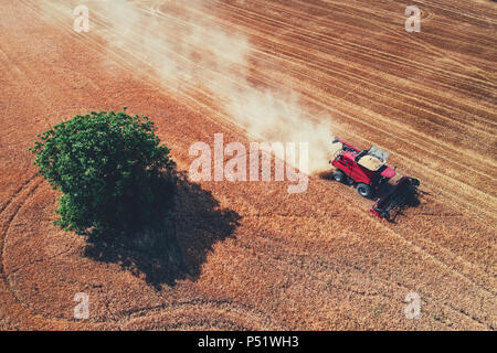 Aerial view on the combine working on the large wheat field. - Stock Photo