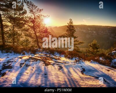 View through tree branches to misty valley within April daybreak. Enjoying foggy morning on the hilly view point - Stock Photo