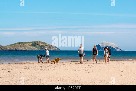John Muir Way, East Lothian, Scotland, UK, 24th June 2018. UK Weather: A warm sunny day during the 2018 Summer heatwave brought people to the coast. The sandy beach at Yellowcraig beach near Dirleton is busy with people walking and dog walkers. The Bass Rock, home of the largest colony of Northern gannets, sparkles in the sunshine - Stock Photo