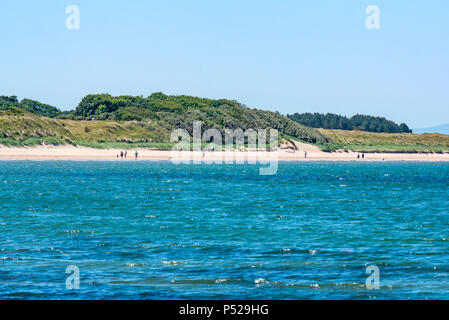 John Muir Way, East Lothian, Scotland, UK, 24th June 2018. UK Weather: A warm sunny day during the 2018 Summer heatwave brought people to the coast for leisure pursuits.. The sandy beach at Yellowcraig beach near Dirleton is busy with walkers and dogs - Stock Photo