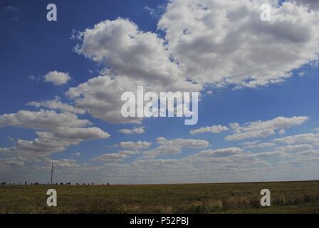 Ukraine. Autonomous Republic of Crimea. Landscape near Yevpatoria. - Stock Photo
