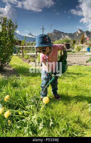 young girl carrying a large green watering can as she helps in the vegetable garden - Stock Photo