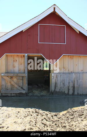 Summer fun at the historic Wagner Farm in suburban Glenview, Illinois. - Stock Photo