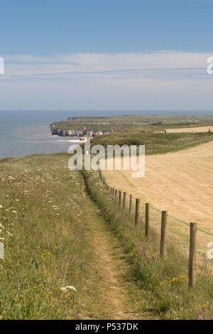 The cliff-top footpath along North Cliff above Thornwick Bay on the East Yorkshire coast - Stock Photo