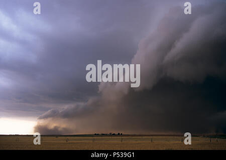 A huge gust front picks up a wall of dust in front of a severe thunderstorm in Texas, USA - Stock Photo