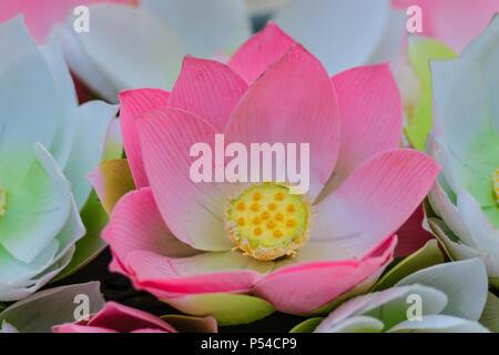 Cute artificial pink lotus flowers or water lily artificial lotus artificial lotus flower handmade paper lotus mightylinksfo