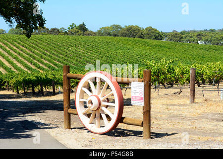 Rows of grape vines with wagen wheel gate, in Australia's major wine growing regiion, Barossa Valley South Australia. - Stock Photo