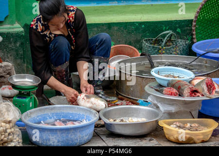 Hanoi, Vietnam - March 16, 2018: Local woman cutting and selling fish on the street - Stock Photo