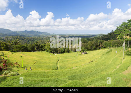 Sidemen, crescent of rice terraces on the road to Semarapura, Bali, Indonesia - Stock Photo