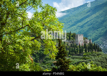 Arco Castle (Castello di Arco) is a ruined castle located on a prominent spur high above Arco and the Sarca Valley in Trentino Alto Adige, northern It - Stock Photo