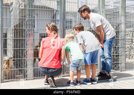 Family looking to adopt a pet from animal shelter - Stock Photo