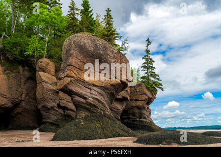 The Hopewell Rocks also known as the flowerpot rocks, along the Bay of Fundy, New Brunswick, Canada. - Stock Photo