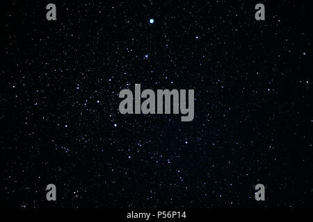 Canis Major constellation. Star cluster messier 41 - Stock Photo