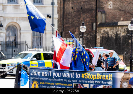 London, United Kingdom - June 25, 2018: People, EU European Union blue flags at anti Brexit protest in UK England by Westminster with signs for stop, stopbrexit politics Credit: Kristina Blokhin/Alamy Live News - Stock Photo
