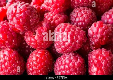 Raspberry fruit background. Macro. - Stock Photo