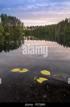 Scenic lake landscape with bright water and evening light at summer in Loppi, Finland - Stock Photo