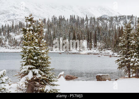 Early snow storm October in Medicine Bow National Forest along scenic highway 130 in southeastern Wyoming. 29 mile Snowy Range Road,  Highway 130. - Stock Photo
